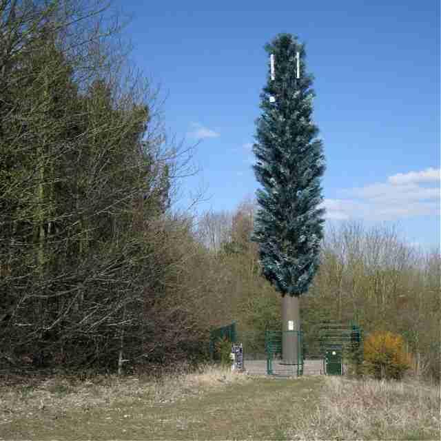 Fake Tree Phone Mast